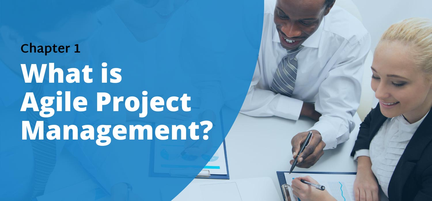 Chapter 1: What Is Agile Project Management (Agile PM)?